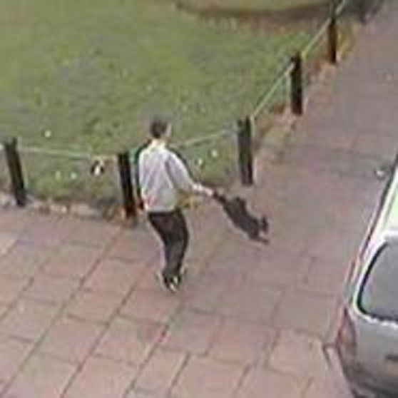 A man has handed himself in to police following an attack on a cat in Ramsgate
