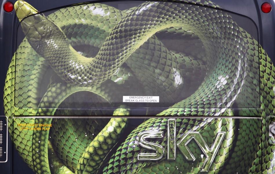 Snakes in Hotel Room