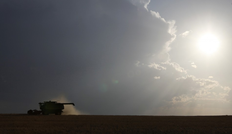 Wheat prices to double in 2012