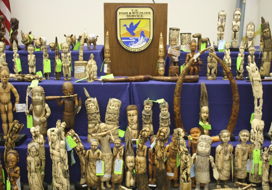 ivory seized confiscated 2011