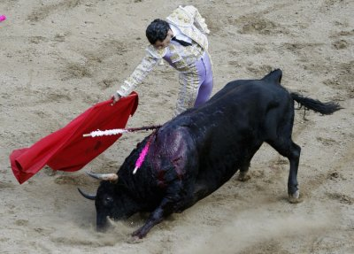 Cali bullfight