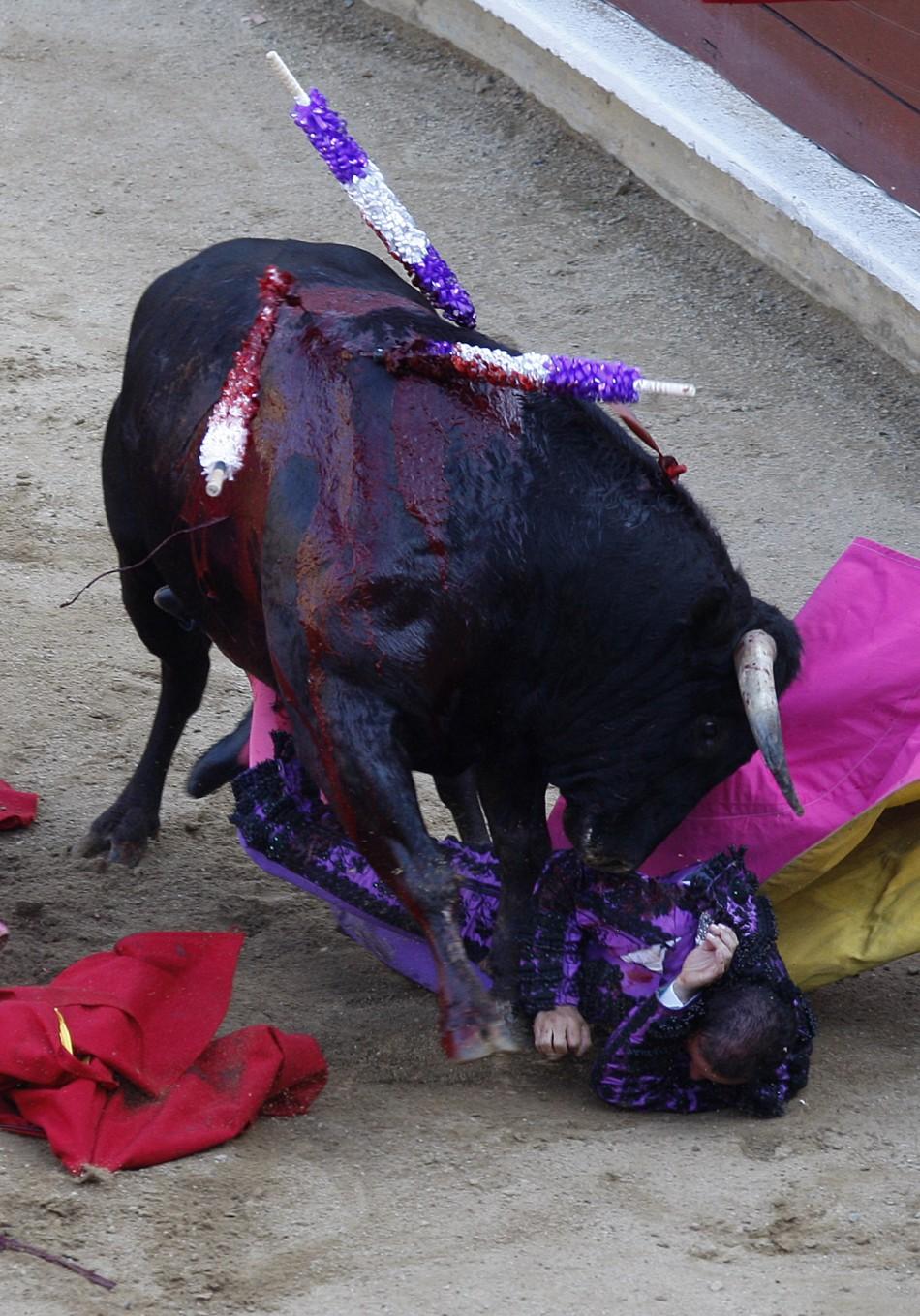 Cali bullfight