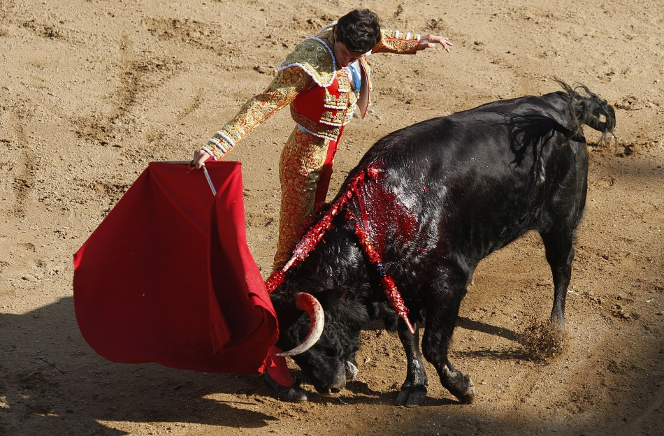 [Image: cali-bullfight.jpg]