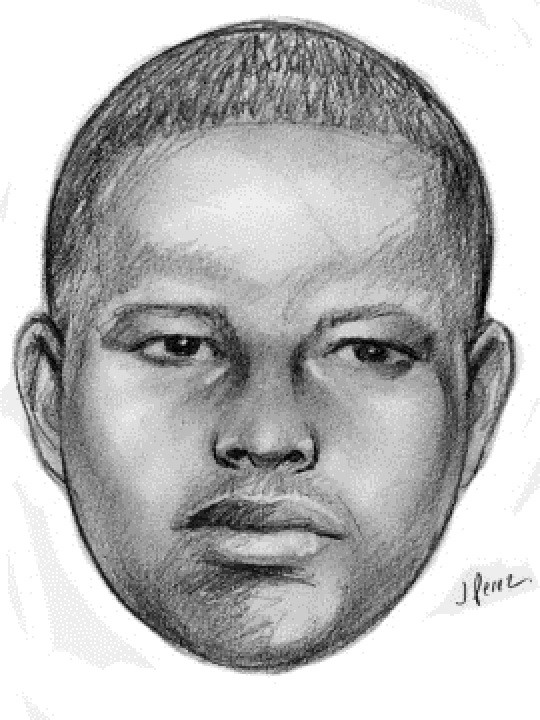 This sketch released by the New York Police Department shows a supsect wanted in a string of arson attacks on Sunday, Jan. 1, 2012