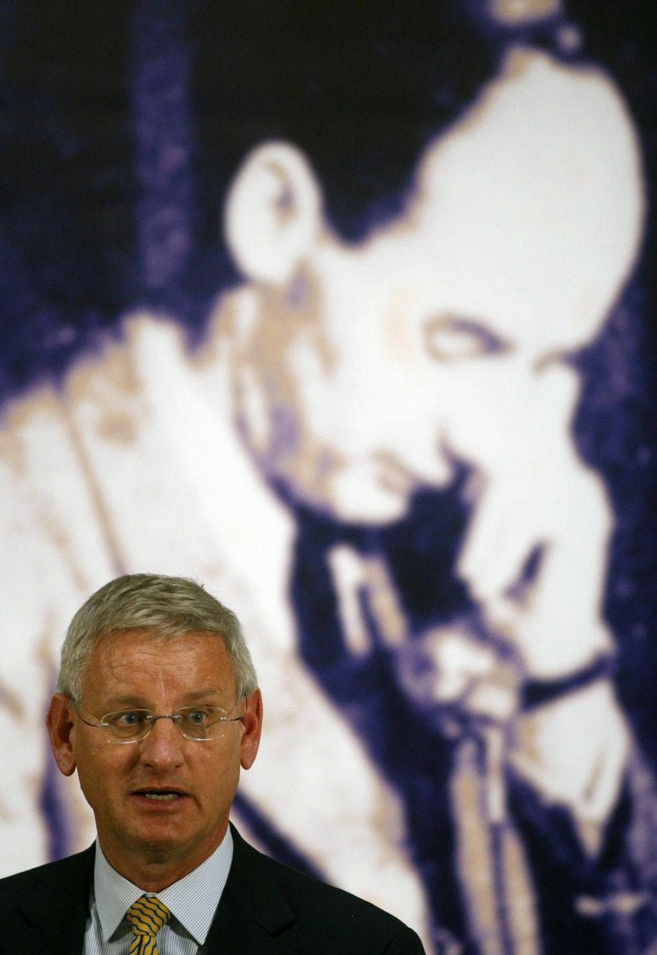 Sweden's Foreign Minister Carl Bildt delivers a speech at the opening ceremony of the Wallenberg Year in the Hungarian National Museum in Budapest (Reuters)
