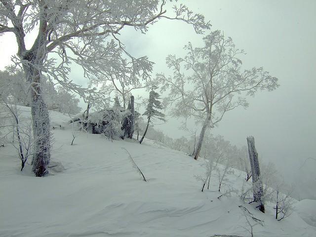 Japanese Snowstorm
