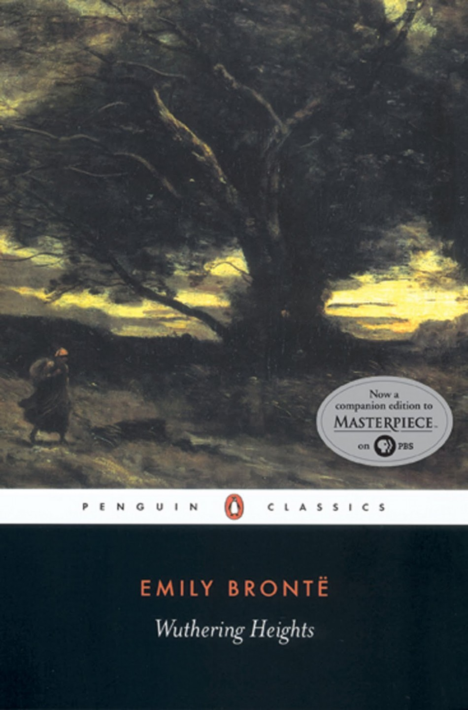 a study of wuthering heights by emily bronte Home → sparknotes → literature study guides → wuthering heights wuthering heights emily bront.