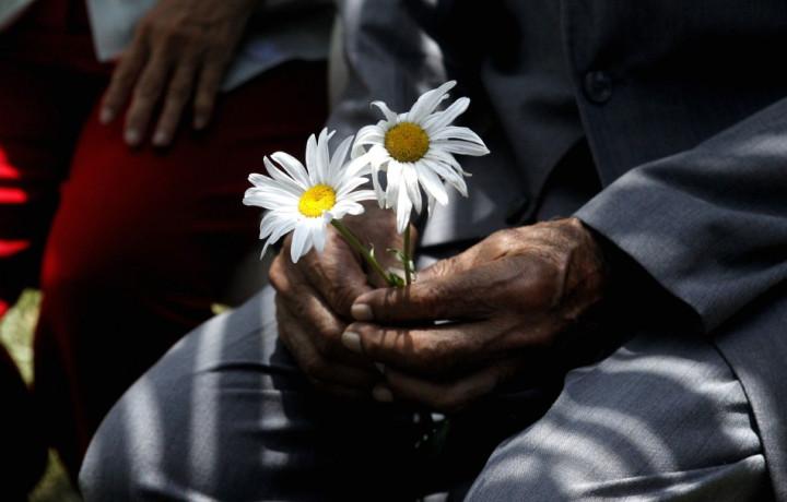 An elderly man holds flowers during Saint Valentine's Day celebrations