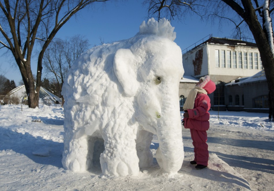 A visitor looks at an elephant made of snow and ice at the Central Botanical Garden during winter in Minsk