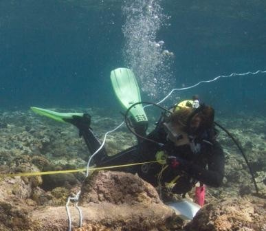 Maddy Fowler measures anchor of the Royal Charlotte, which sank in 1825