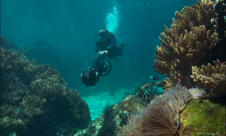 Coral Reef: Underwater Sample Imagery