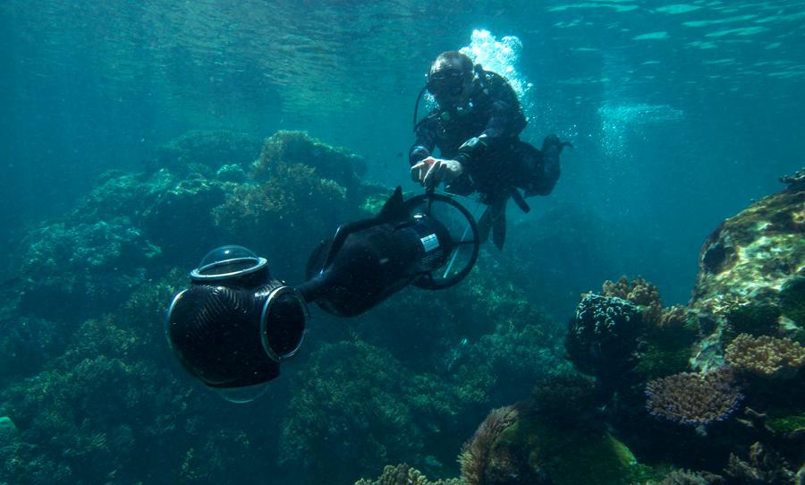 Coral Reef: Underwater Sample Imagery