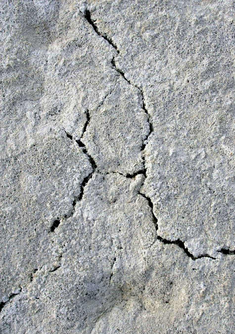 A close-up of the dry and salted soil of the Aral sea near the village of Karateren, southwestern Kazakhstan