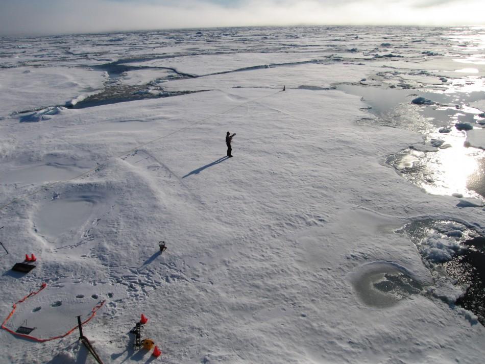Melting arctic sea
