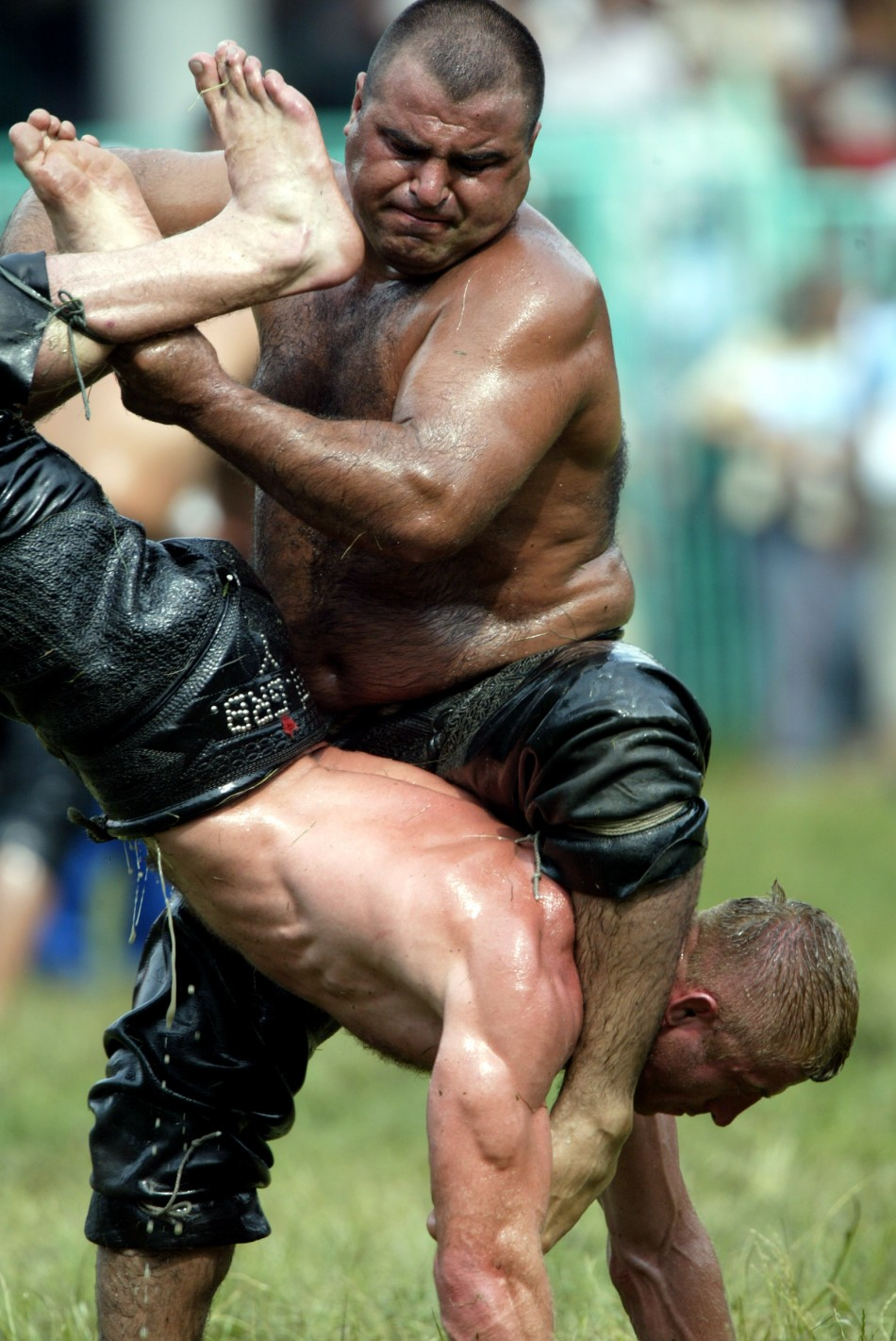 Turkey's Greasy Wrestling Competition