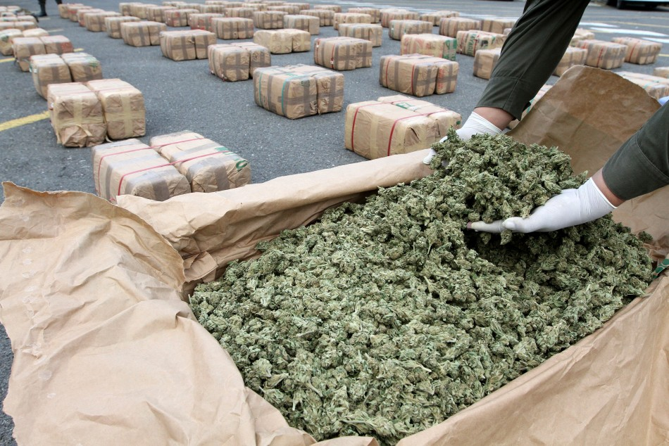 Entire Illegal Drugs Trade