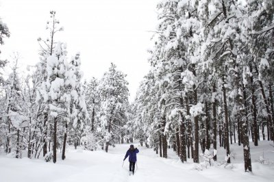 Rose Houk cross-country skies through Thorpe Park as several inches of snow cover the ground in Flagstaff