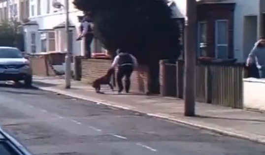 Video shows the dog attacked the police officers in east London (Youtube/xBASSxMONSTAx)