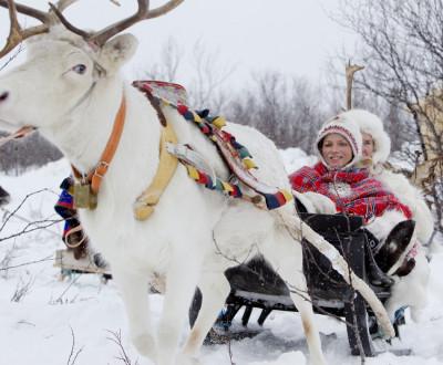 Prince Albert II, Princess Charlene Enjoys a Reindeer Sledge Ride