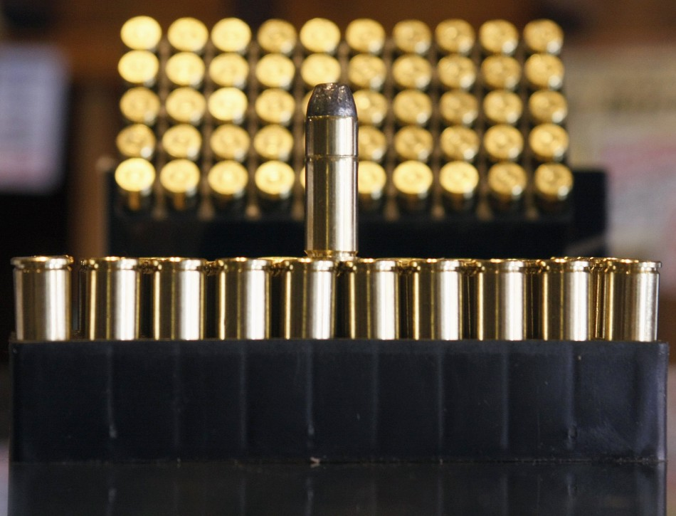 .38 caliber ammunition