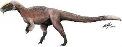 New Species of T-Rex Discovered