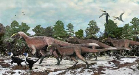 New Hairy Species of T-Rex Discovered
