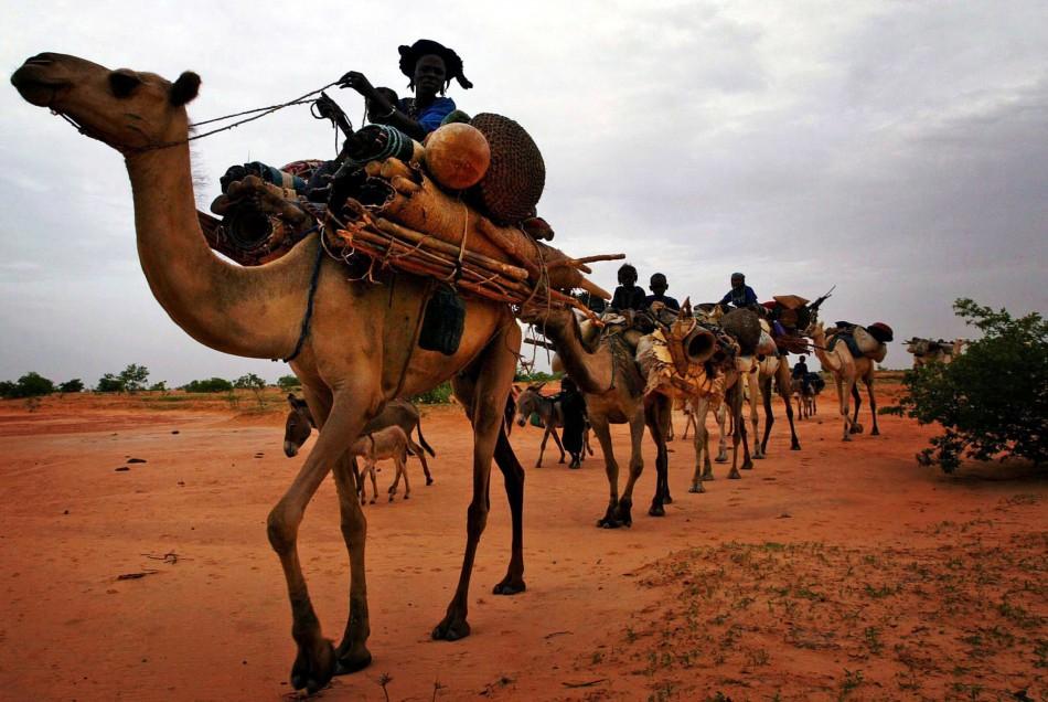 Ethnic Tuareg