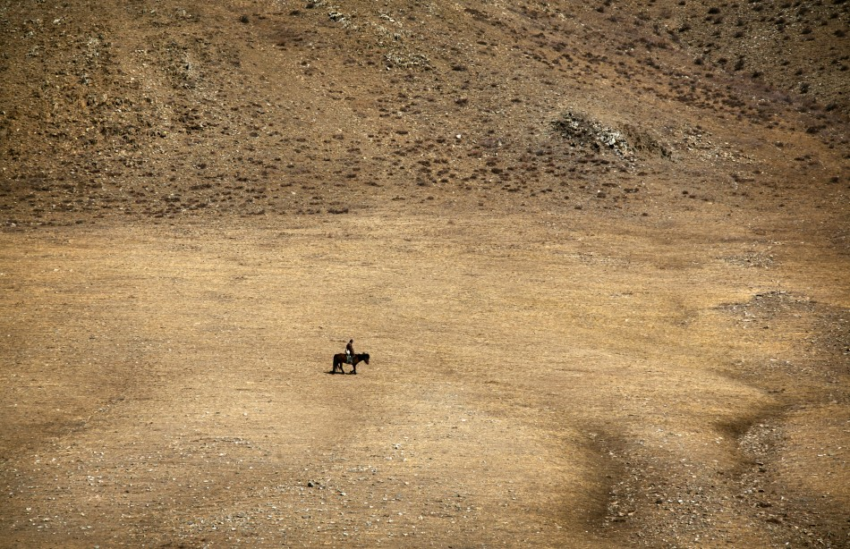 A herder rides a horse on grasslands located around 200km (62 miles) south-west of the Mongolian capital city Ulan Bator
