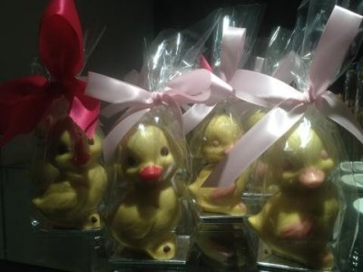 Chocolate chicks