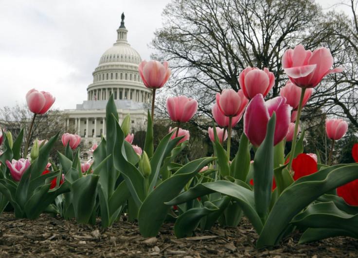 1. Washington