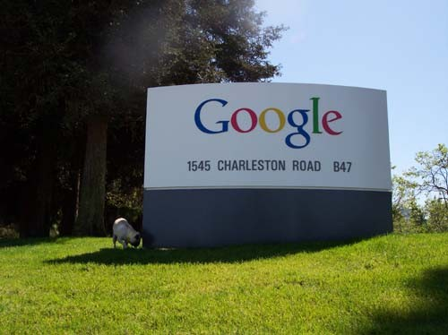 Google Earnings Call