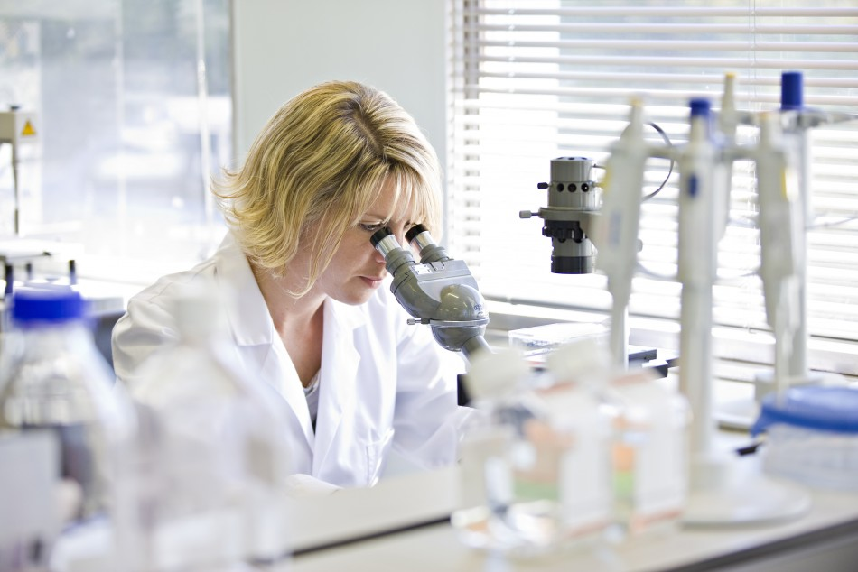 A staff scientist of Living Cell Technologies (LCT) works at a laboratory in the LCT headquarters in Auckland in this undated picture obtained by Reuters on April 17, 2012. A New Zealand company plans to implant pig cells in the human brain in a clinical