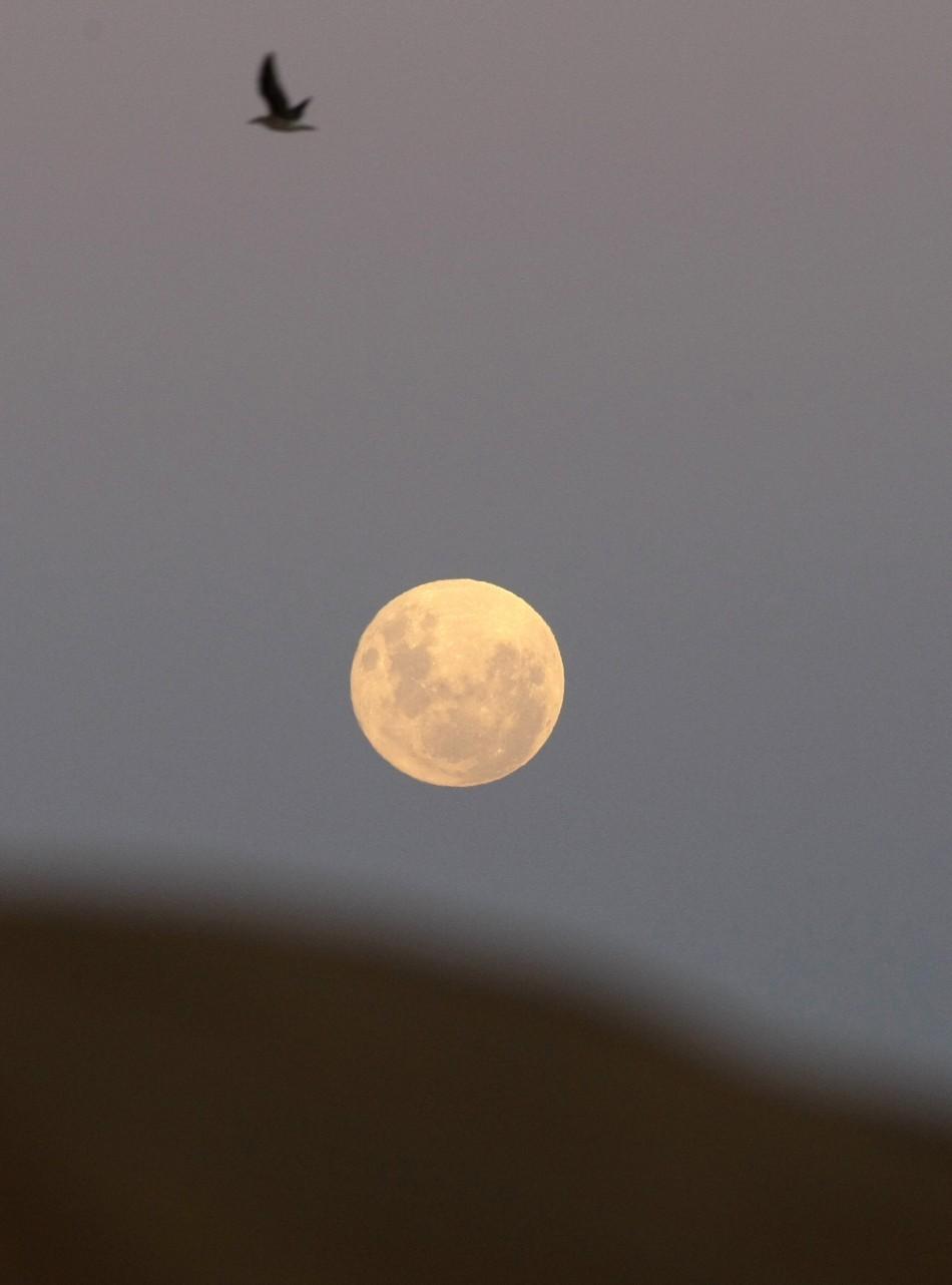 The moon is seen over Vina del Mar city
