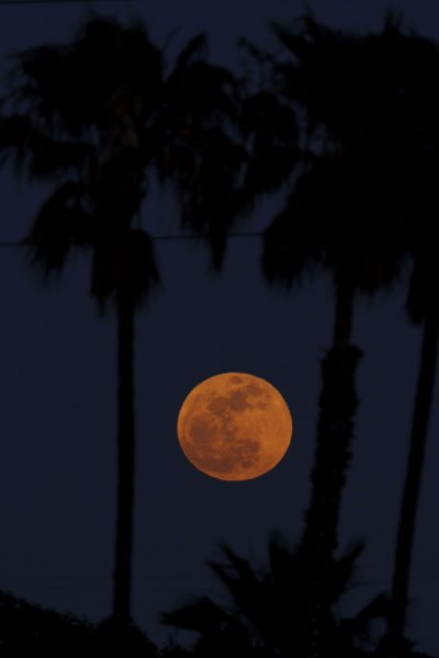 The Super Moon rises in Inglewood