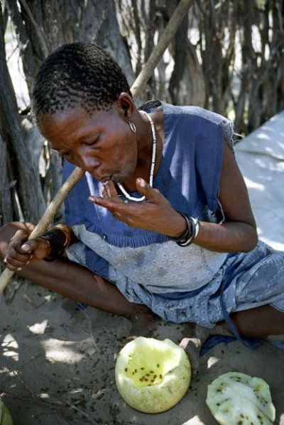 Botswanas Bushmen The Worlds Last Surviving Hunter Gatherers