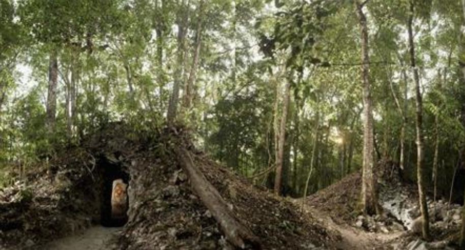 Trees grow atop the newly discovered house built by the ancient Maya that contains the rendering of an ancient figure, possibly the town scribe. REUTERS/Tyrone Turner/National Geographic/Handout