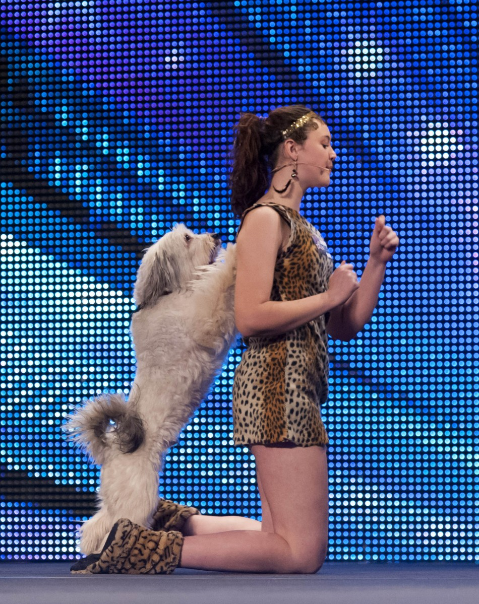 Pudsey Dog Britain S Got Talent