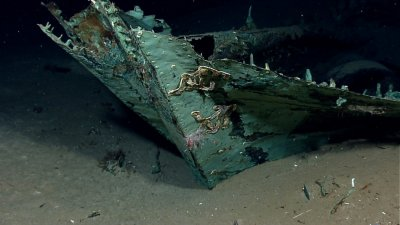 200-Year-Old Shipwreck Discovered in Unexplored Gulf of Mexico
