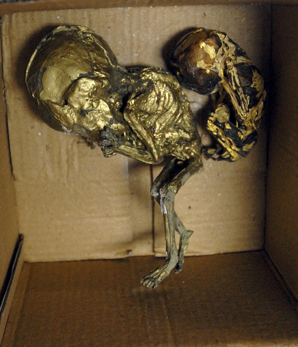 Foetuses Wrapped in Gold Foil for Black Magic Seized in Thailand