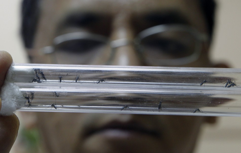 Seasonal Protection against Malaria Could Save Thousands of Life