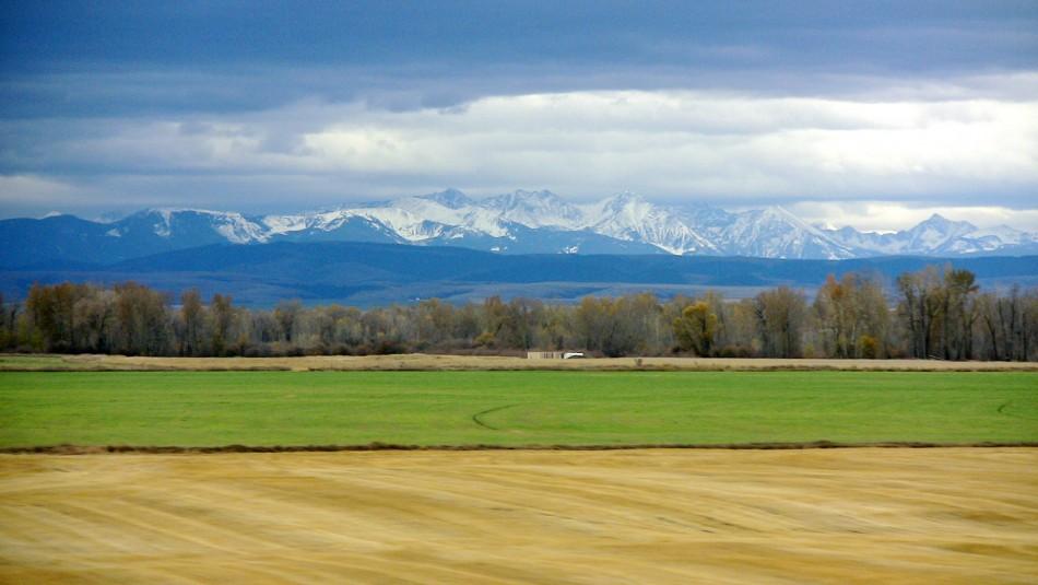 2. Montana