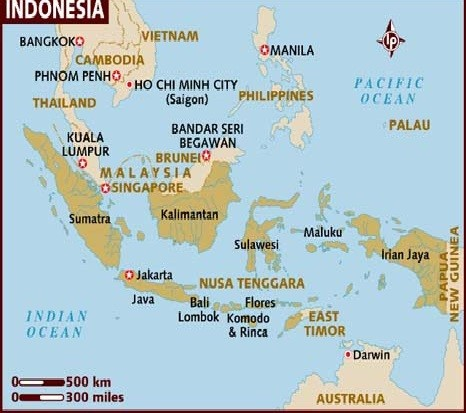 An Indonesia military plane crashed into homes in the capital Jakarta, setting buildings on fire and killing at least 9 people