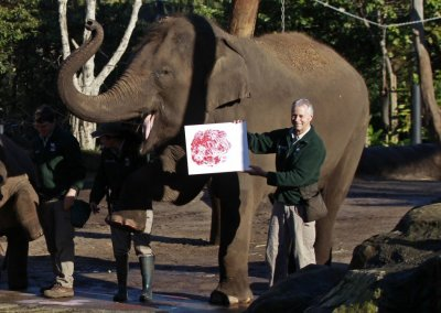 Elephant Pak Boon and keeper Miller pose with the elephants footprint at Taronga Zoo in Sydney