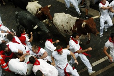 Runners sprint alongside Dolores Aguirre fighting bulls on Santo Domingo hill during the first running of the bulls of the San Fermin festival in Pamplona