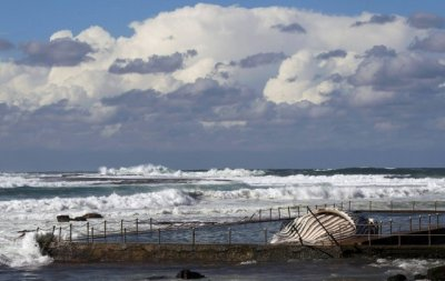 Giant Humpback Whale Found Dead in Australian Beach Swimming Pool