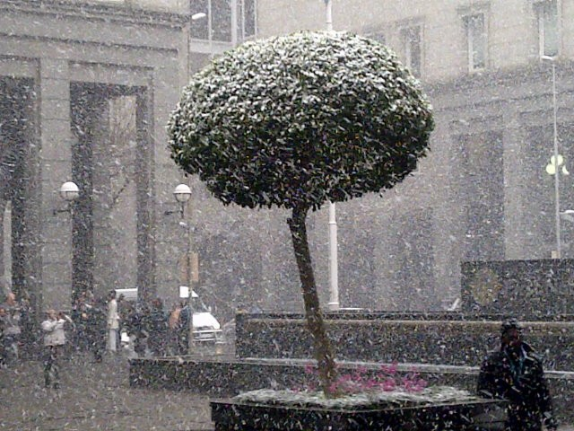 Snow Johannesburg 7