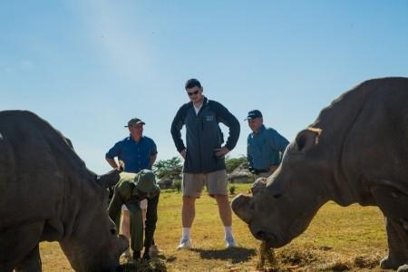 Yao and the rhinos