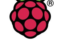 Raspberry Pi official logo