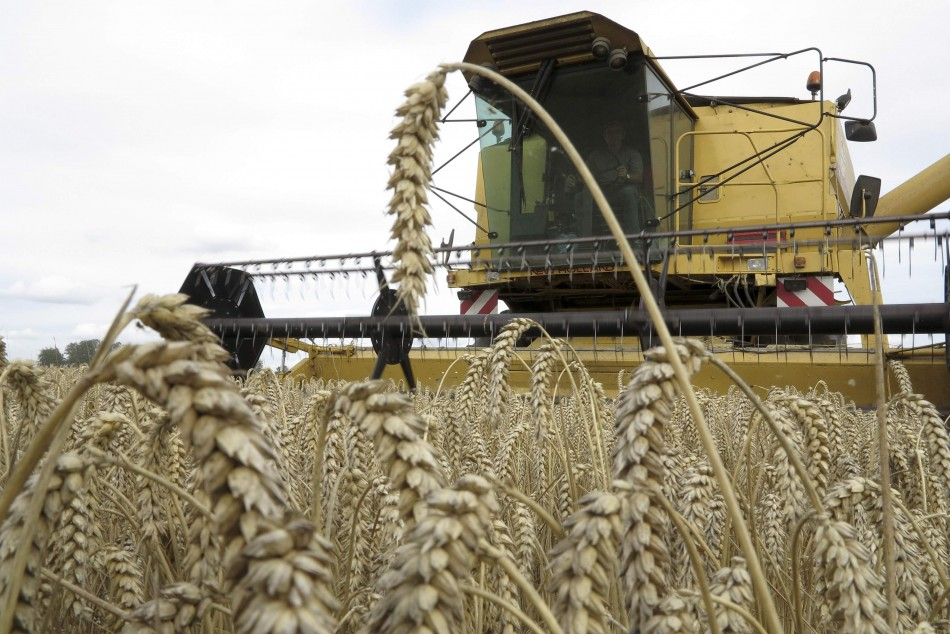 French wheat combine