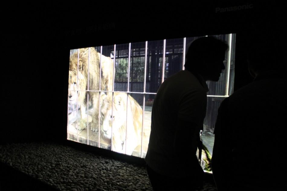 Panasonic 8k TV